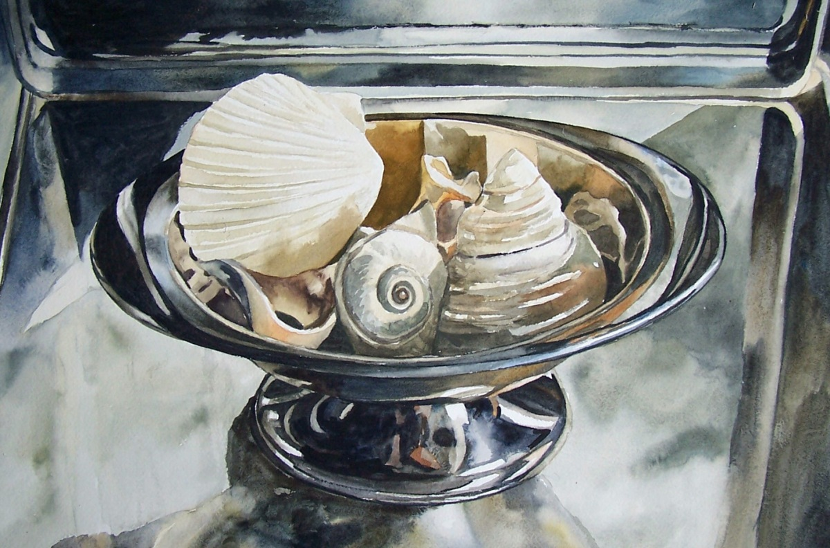 Shells watercolour Andrew Henderson