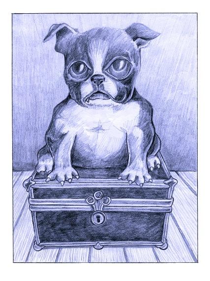 Tinderbox Dog andrew henderson