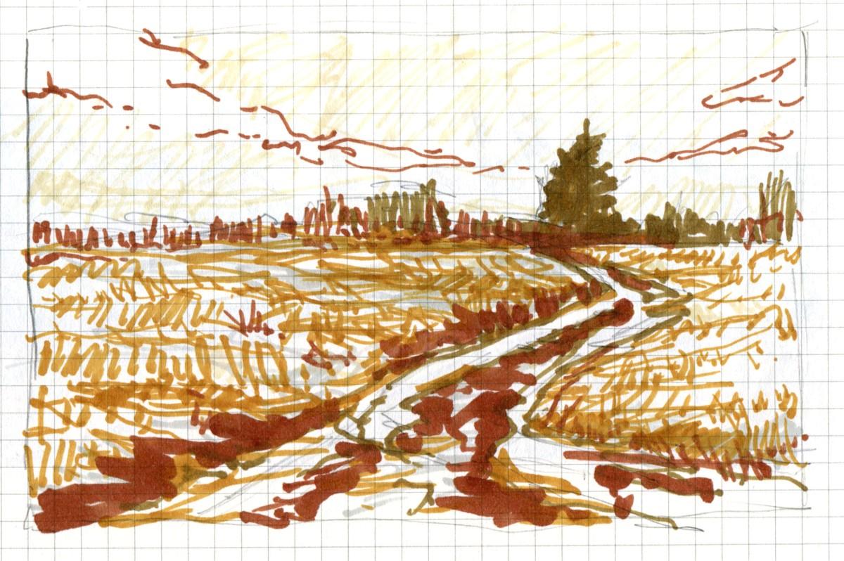 Hayfield Road sketch Andrew Henderson
